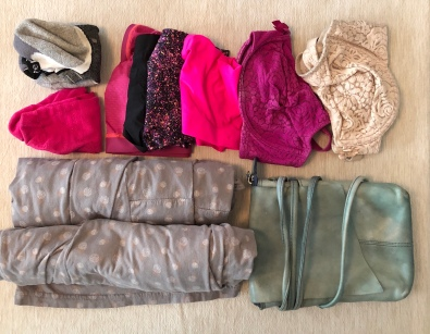 I'm taking 2 pairs of quick-dry socks, 4 quick-dry underwear, 2 bras, bamboo PJs and a small purse.
